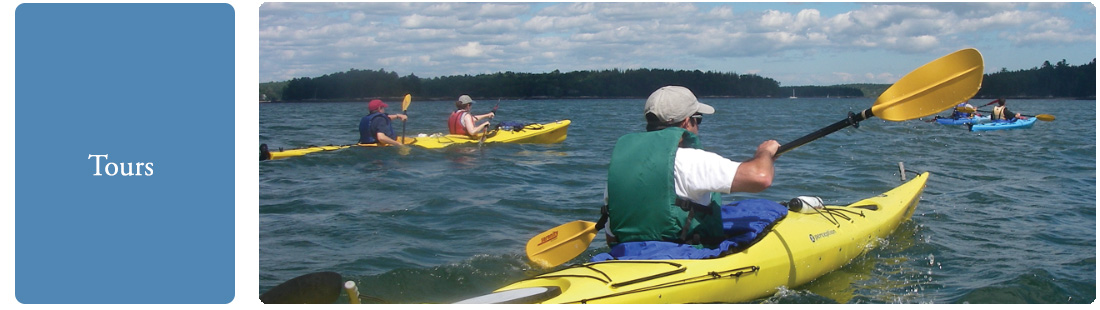 Midcoast Kayak Tours